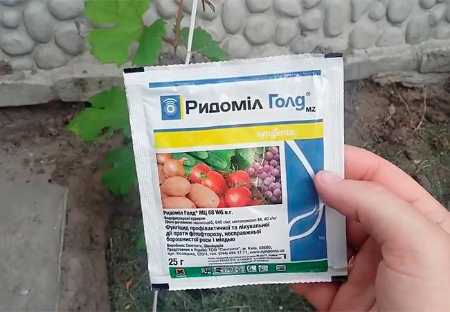 Фунгицид Фалькон применение для винограда роз растений томатов огурцов аналоги как разводить