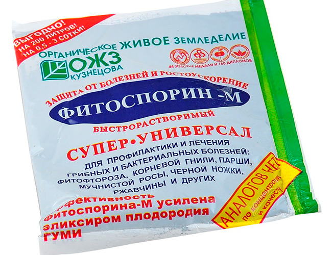 bti-16.jpg