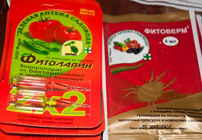 Применение актары для рассады помидор