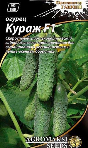 Огурцы Какие сорта выращивать в теплице из поликарбоната?